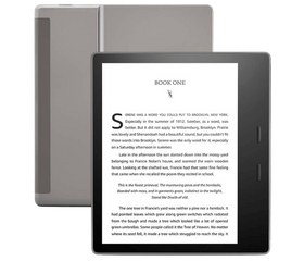 Amazon Kindle Oasis 2019 32 GB Серый
