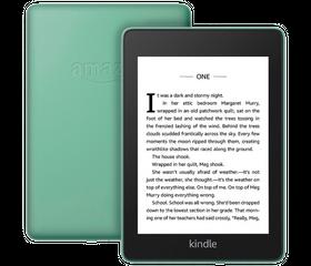 Amazon Kindle Paperwhite 2018 32 GB Зелёный