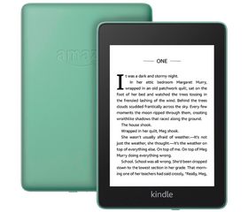 Amazon Kindle Paperwhite 2018 8 GB Зелёный