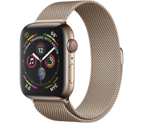 Apple Watch Series 5 LTE 40 мм Сталь золотистый/Миланский золотой MWWV2