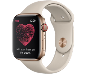 Apple Watch Series 4 LTE 40 мм Сталь золотистый/Бежевый MTUR2